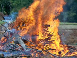 Open Burning Closing for Winter